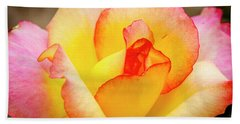 Blooming Yellow And Pink Rose Beach Towel by Teri Virbickis