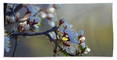 Blossoms Beach Sheet by Betty-Anne McDonald