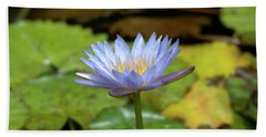 Blue And Yellow Water Lily Beach Towel
