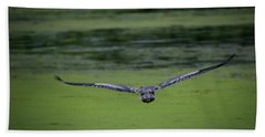 Beach Towel featuring the photograph Blue Angel by Ray Congrove