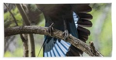 Blue Bellied Roller Stretching His Flight Feathers Beach Towel