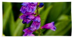 Blue Bells Wild Flower Beach Sheet by James Gay