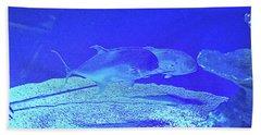 Blue Below Beach Sheet