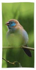 Blue Bird Chirping Beach Towel