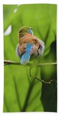 Blue Bird Has An Itch Beach Towel