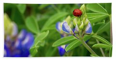 Texas Blue Bonnet And Ladybug Beach Towel