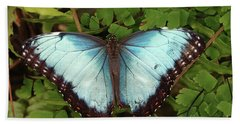 Blue Butterfly On Green Leaves Beach Towel