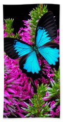 Blue Butterfly On Heather Beach Towel