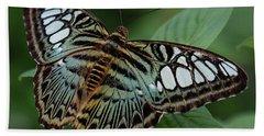 Blue Clipper Butterfly Open Beach Towel