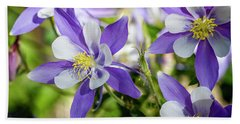 Blue Columbine Wildflowers Beach Towel by Teri Virbickis