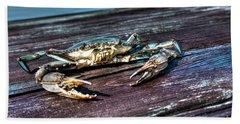 Blue Crab - Above View Beach Towel