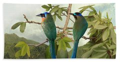 Blue-crowned Motmots In Kapok Tree Beach Towel