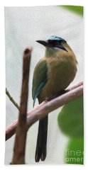 Blue-crowned Motmot Oil Beach Towel