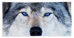 Beach Towel featuring the photograph Blue Eyed Wolf Portrait by Mircea Costina Photography