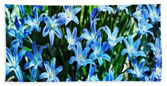 Blue Glory Snow Flowers  Beach Towel