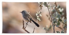 Beach Towel featuring the photograph Black-tailed Gnatcatcher by Dan McManus