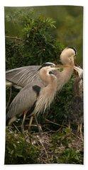 Beach Sheet featuring the photograph Blue Heron Family by Shari Jardina