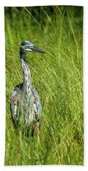 Beach Towel featuring the photograph Blue Heron In A Marsh by Paul Freidlund