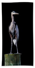 Blue Heron Prestige Beach Towel