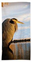 Blue Heron Resting Beach Sheet