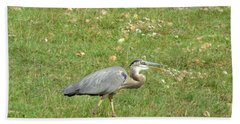 Beach Towel featuring the photograph Blue Heron by Robin Regan