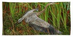 Blue Heron Take-off Beach Towel by Tom Claud