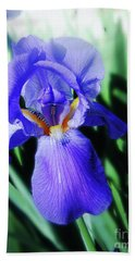Blue Iris 2 Beach Towel