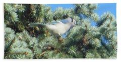 Blue Jay Colorado Spruce Beach Sheet