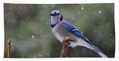 Beach Towel featuring the photograph Blue Jay In Falling Snow by Daniel Reed