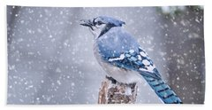 Blue Jay In Snow Storm Beach Towel