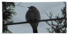 Blue Jay On Wire Beach Sheet