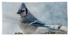 Beach Towel featuring the photograph Blue Jay Perch by Patti Deters