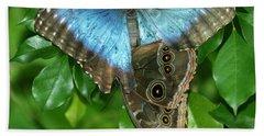 Blue Morpho Butterflies Beach Towel