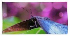 Blue Morpho  Butterfly 2 Beach Towel