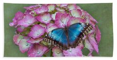 Blue Morpho Butterfly On Pink Hydrangea Beach Sheet