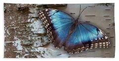 Blue Morpho Butterfly On White Birch Bark Beach Sheet