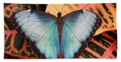Blue Morpho On Orange Leaf Beach Towel