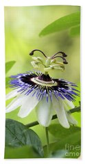 Blue Passion Flower Beach Towel