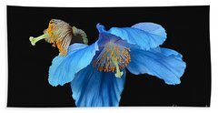 Blue Poppies Beach Sheet