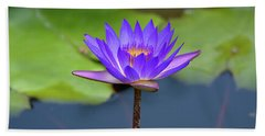 Blue Purple And Orange Water Lily Beach Towel