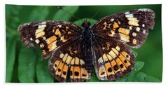 Beach Sheet featuring the photograph Blue Ridge Butterfly by Kay Lovingood