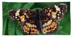 Blue Ridge Butterfly Beach Sheet
