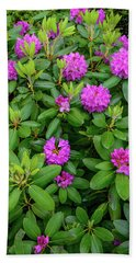 Blue Ridge Mountains Rhododendron Blooming Beach Towel