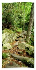 Beach Towel featuring the photograph Blue Ridge Parkway Hiking Trail by Meta Gatschenberger