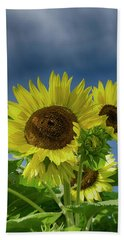 Blue Sky Day Beach Towel