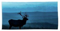 Blue Sunrise Beach Sheet by Jay Stockhaus