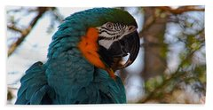 Blue Throated Macaw 002 Beach Towel