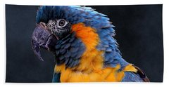 Blue-throated Macaw Profile Beach Towel