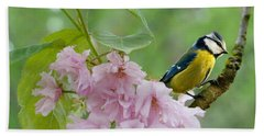 Blue Tit On Cherry Blossom Beach Towel