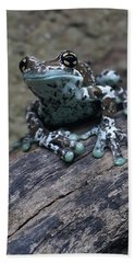 Blue Tree Frog Beach Sheet